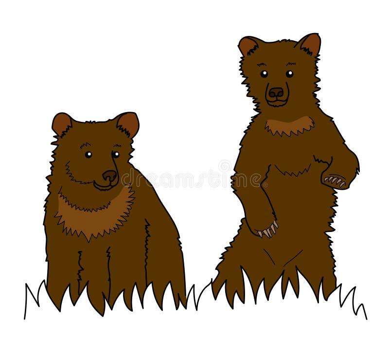 Ursos, animais foto de stock royalty free