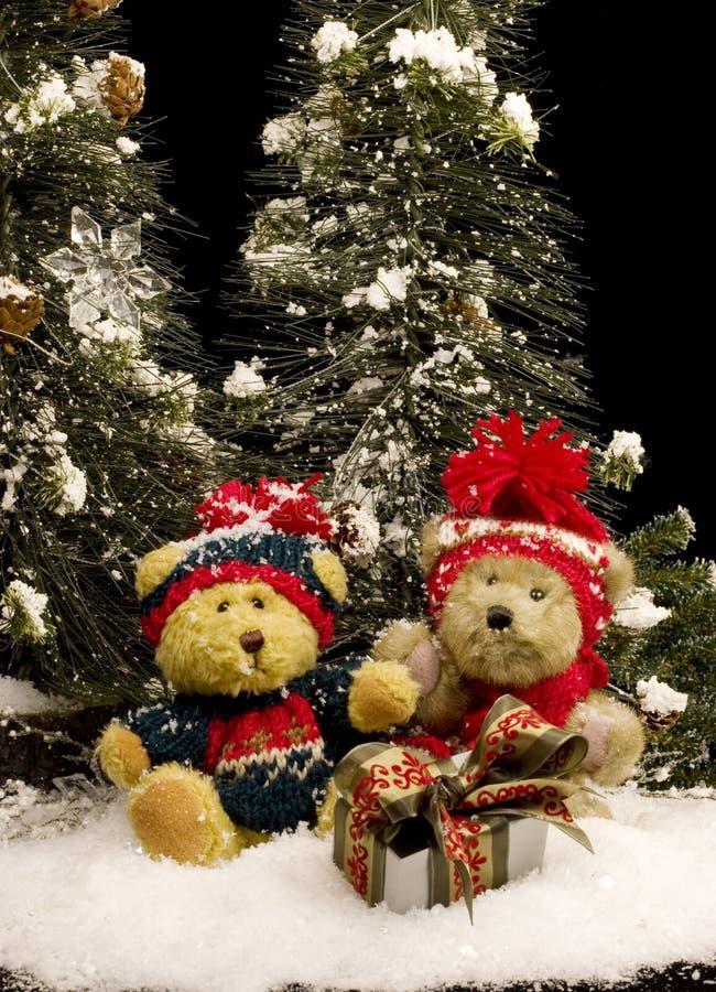 Ursos da peluche com presente - vertical foto de stock royalty free