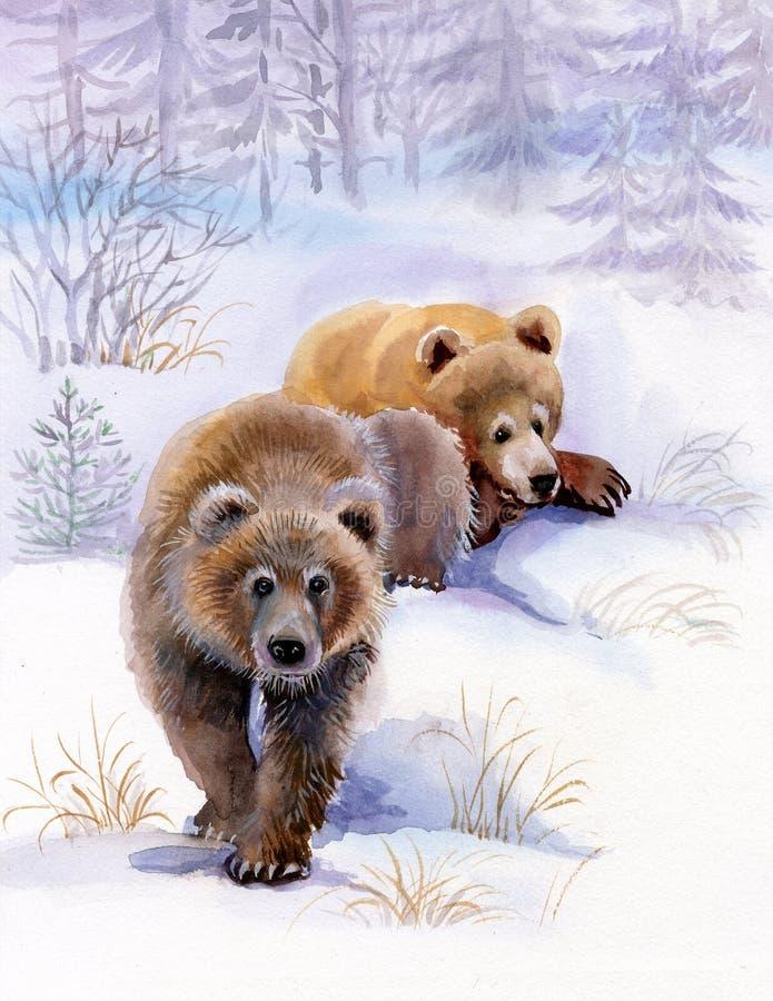 Ursos de Brown na neve ilustração do vetor