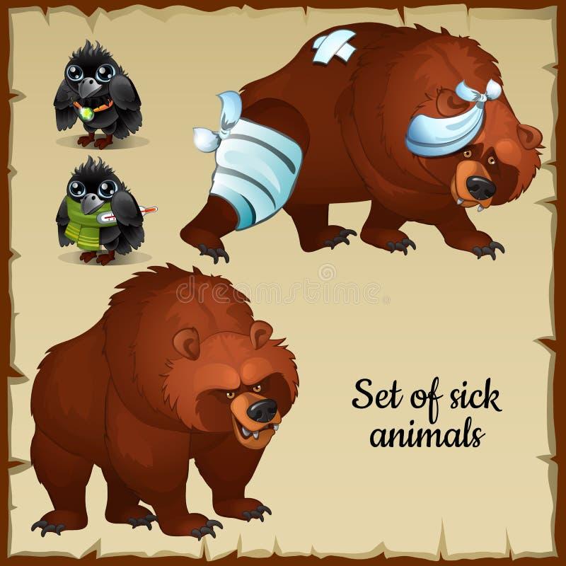 Ursos e pássaros doentes e saudáveis ilustração royalty free