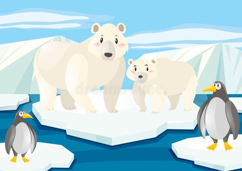 Ursos polares e pinguins no gelo ilustração stock