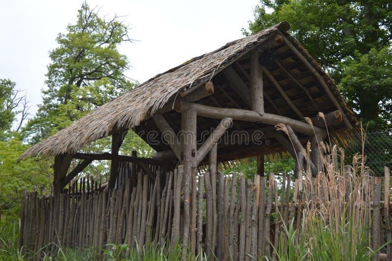 Ursprüngliche hölzerne Hütte decken Dach mit Stroh stockbilder