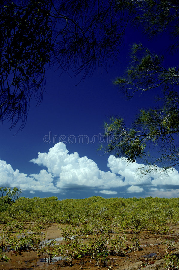 Ursprüngliche Küstenlinie 9 stockfoto