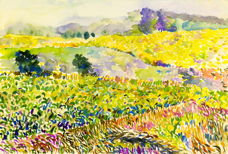 Ursprüngliche Landschaftsbunte Felder von Blumen im Berg stock abbildung