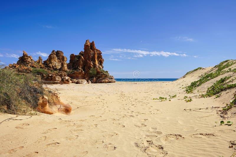 ursprüngliche unberührte schroffe KüstenlinienSanddünen stockbild