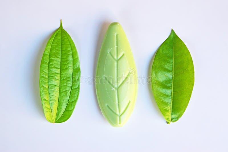 Ursprüngliche und gefälschte Gegenstände (Blätter) neben einander stockfoto
