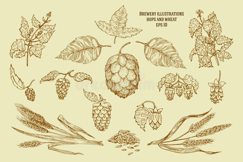 Ursprüngliche Weinleseillustrationen für Bier bringen unter, halten, Kneipe, brauende Firma, Brauerei, Taverne, taproom, Bierloka stock abbildung