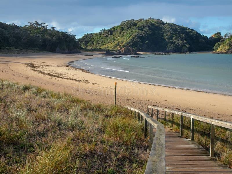 Ursprünglicher Strand an Matapouri-Bucht, Neuseeland stockbild