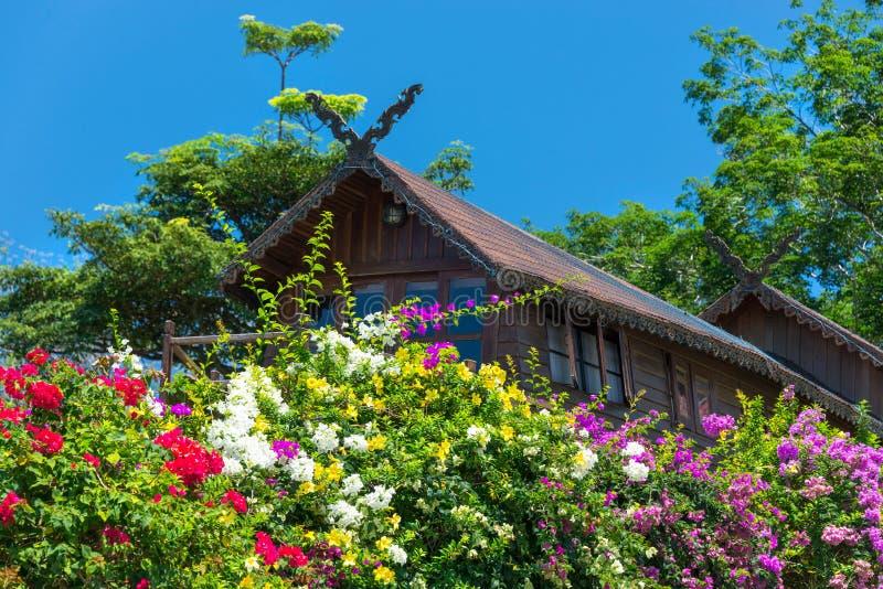 Ursprüngliches Blumenbeet am Gästehaus des Paradies-Parks, Samui, thailändisch lizenzfreie stockbilder