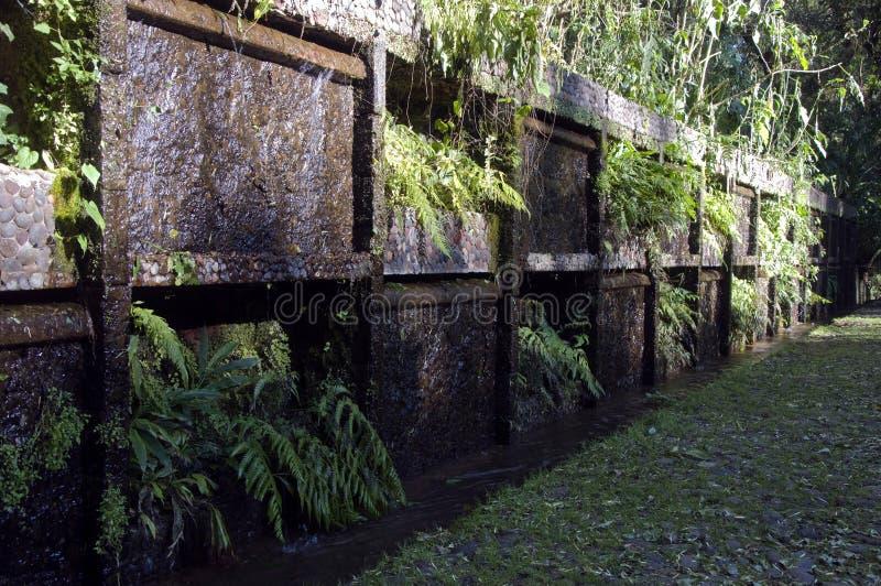 uruapan mexico park royaltyfri foto