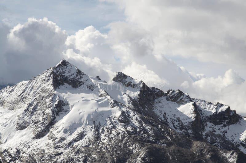 Urus máximo na montanha das Cordilheira fotos de stock