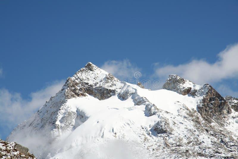 Urus máximo nas Cordilheira, Peru foto de stock