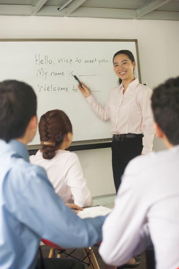 Urzędnika nauczania coworkers zdjęcia royalty free