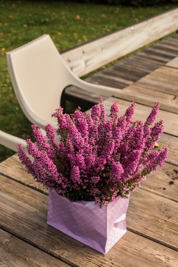A urze em um saco cor-de-rosa ajustou-se na tabela rústica de madeira imagens de stock
