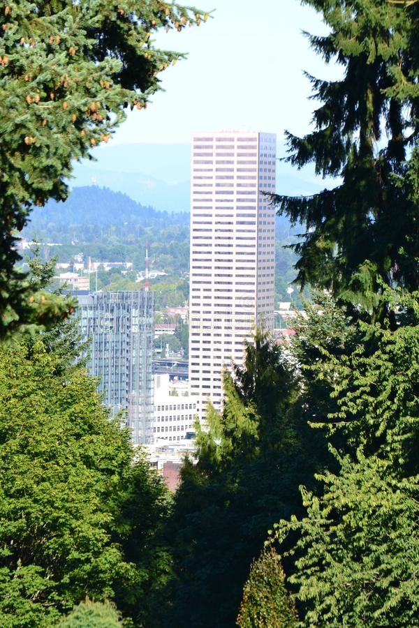 US Bancorp Building framed by trees in Portland, Oregon. This is the US Bancorp Building in Portland, Oregon framed by trees royalty free stock photography