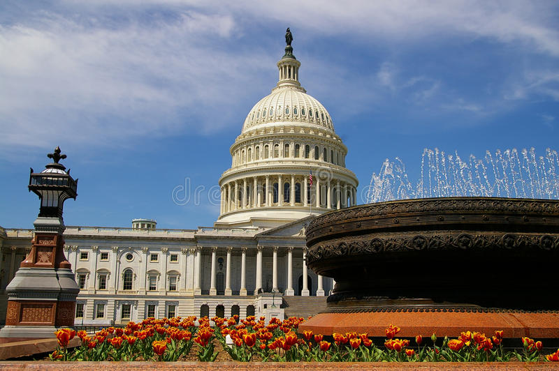 Download US capitol stock photo. Image of united, dome, building - 29012398