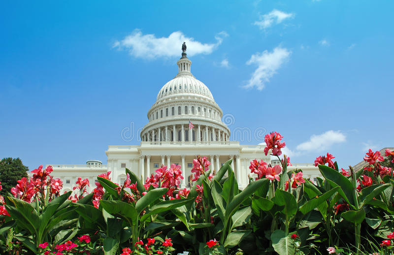 US Capitol with Summer Flowers stock images