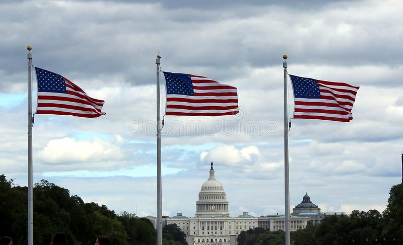 US Capitol in Washington, DC. With US flags stock images