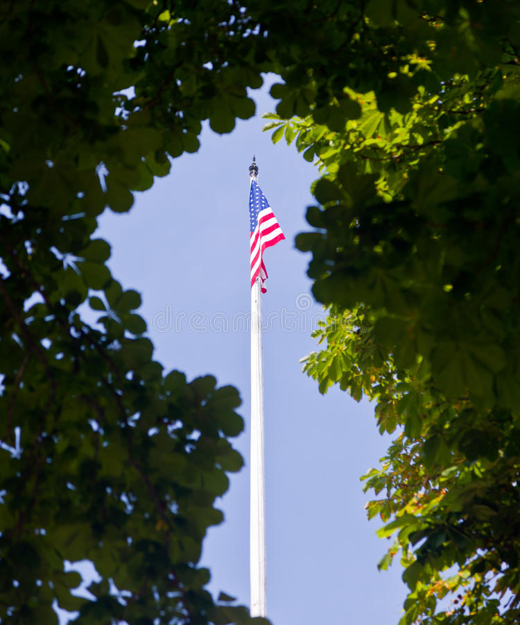 US flag framed by leaves. Stars and stripes US flag framed by green leaves and trees against blue sky stock image