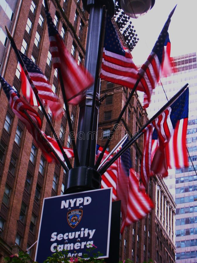 US Flags in New York during hurricane Irene. American flags during strong winds in Hurricane Irene in New York royalty free stock image