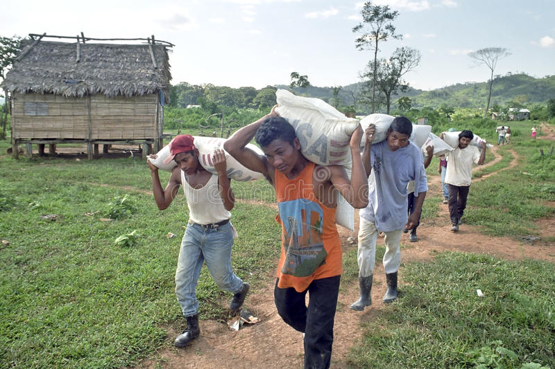US food aid for Nicaraguan Indians. Nicaragua, Andris Tara village, on the border river Coco, Coco Rio in Spanish, between Nicaragua and Honduras is the home to stock photography