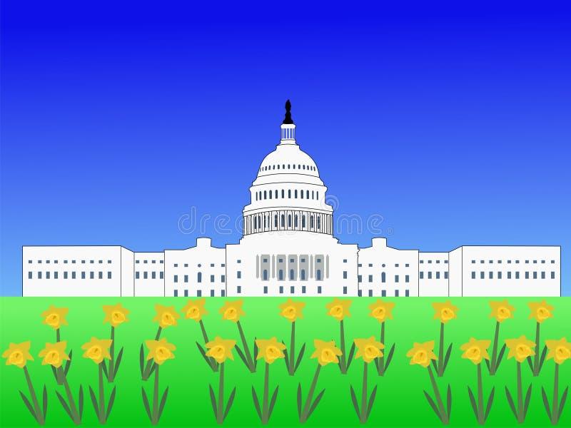US-Kapitol im Frühjahr lizenzfreie abbildung