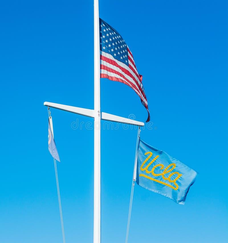 US- und UCLA-Flaggen unter einem klaren Himmel lizenzfreies stockbild