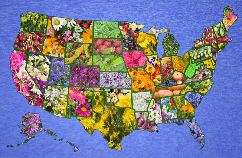 USA-amerikanische Karte von den Blumen stockbild