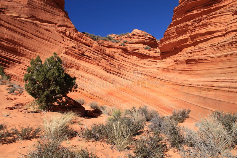 USA, Arizona: Kojote Buttes Süd - gemeißelte Sandstein-Schichten stockfotos