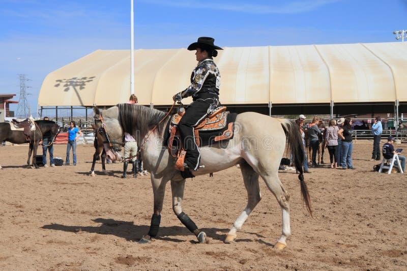 USA Arizona: Ryttare på arabisk häst royaltyfria foton