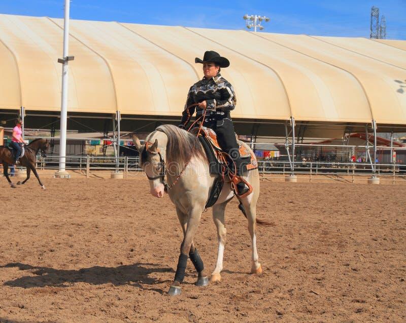 USA, AZ: Equestrienne na Arabskim koniu obrazy stock