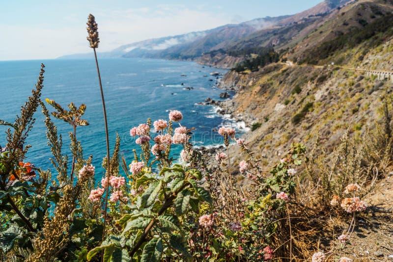 USA - Big Sur Nabrzeżna linia obrazy stock