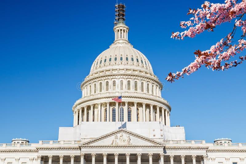 USA Capitol przy wiosna słonecznym dniem obraz stock