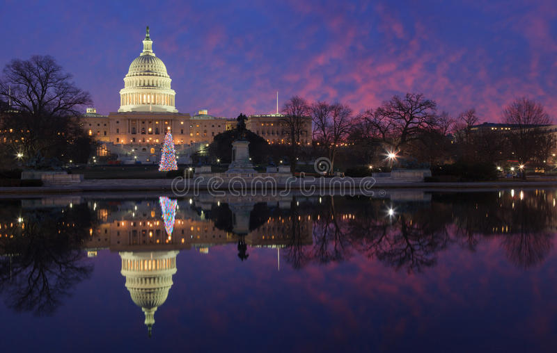 USA choinki Capitol Iluminujący DC obraz stock