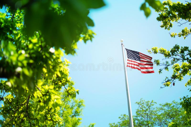 USA flag, american flag waving in the wind between trees stock photo