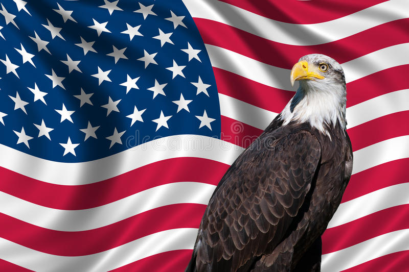 Download USA Flag with bald eagle stock illustration. Image of patriotism - 30504423