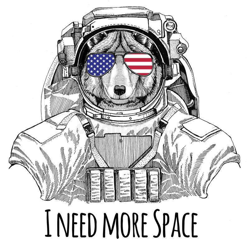 usa flag glasses american flag united states flag wolf dog wearing space suit wild animal astronaut spaceman galaxy exploration 94740596