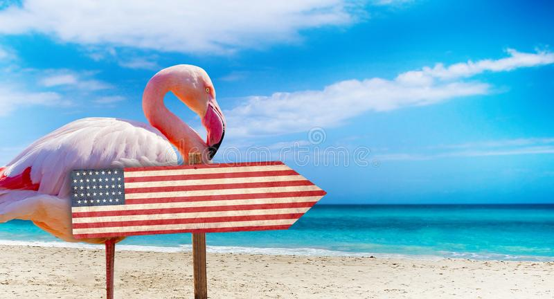 USA flag on wooden table sign on beach background with pink flamingo. There is beach and clear water of sea and blue sky in the. Background. It is tropical royalty free stock images