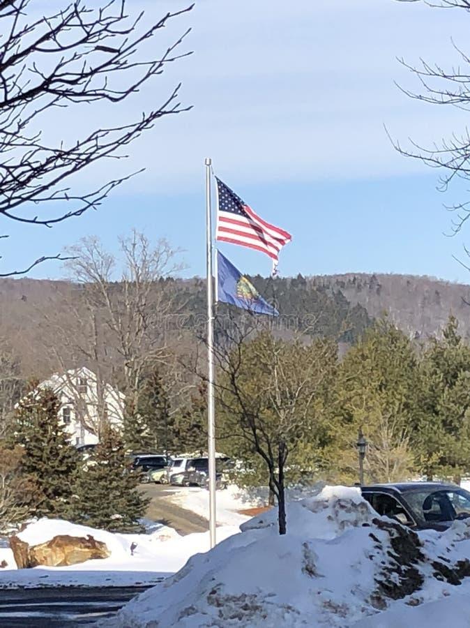 USA-flaggstång royaltyfri foto
