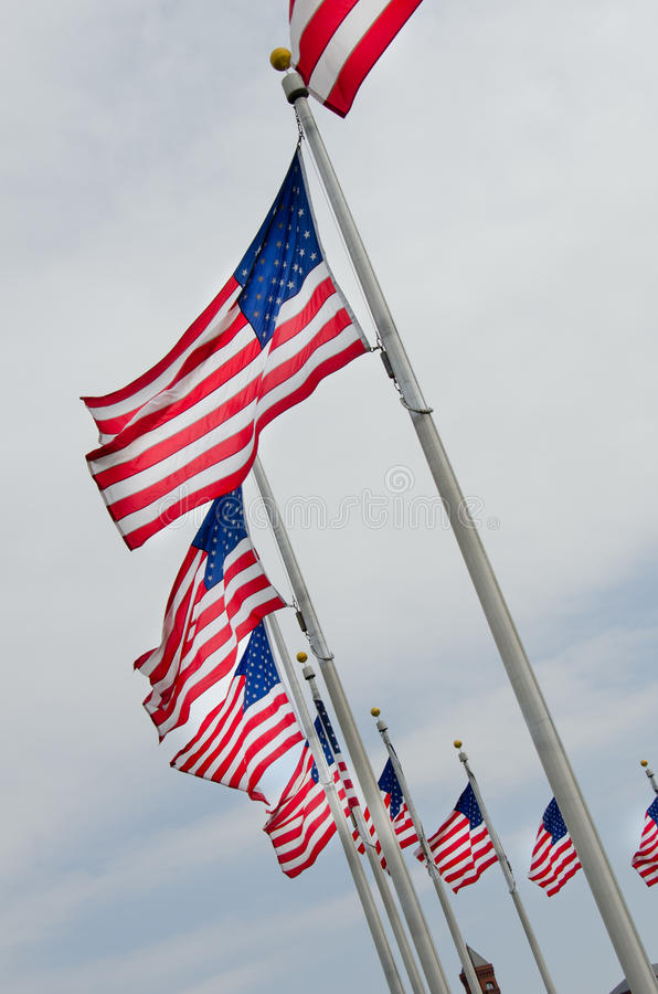 Download USA Flags On Flagpoles Stock Image - Image: 19589791