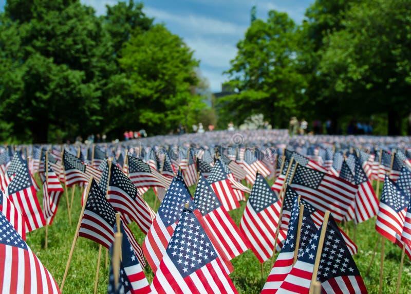 USA flags royalty free stock photo