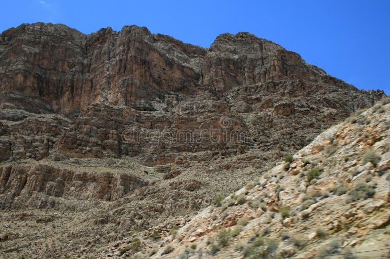 USA Gråa berg Nevada och ökenväxt geologisk struktur Klippor och vaggar royaltyfri bild