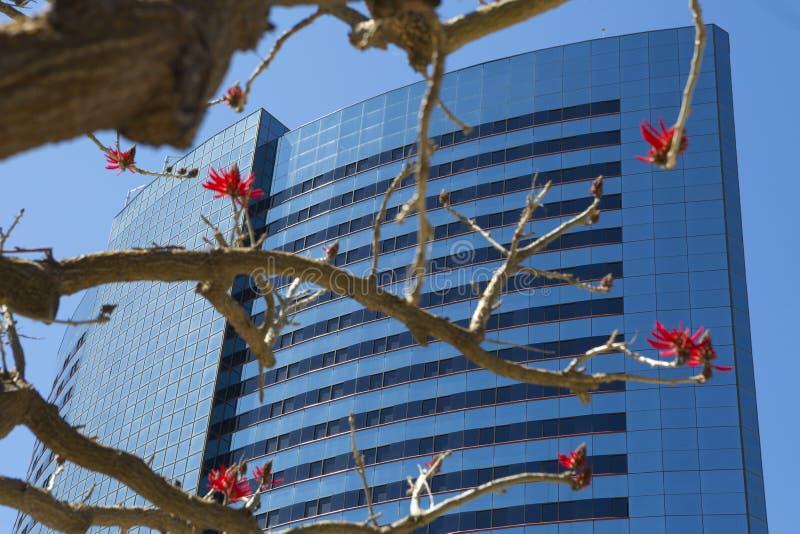 USA - Kalifornien - San Diego - Marriott Marquis San Diego Marina lizenzfreie stockfotos