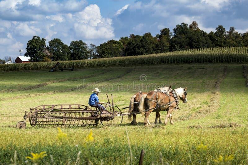 USA - Ohio, Amish - obrazy royalty free