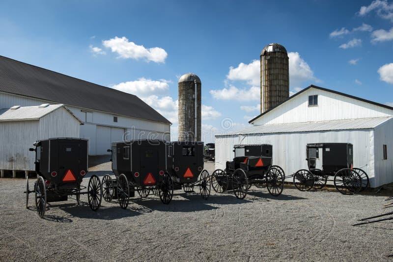USA - Ohio, Amish - obraz stock