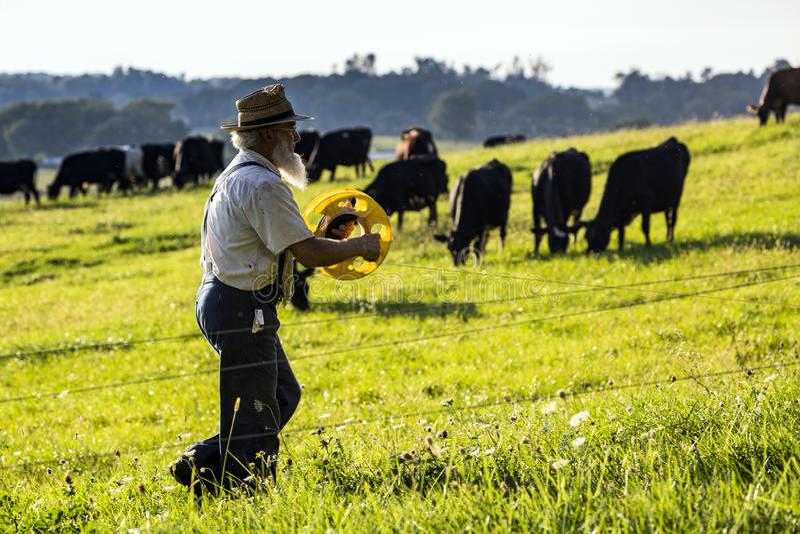 USA - Ohio, Amish - zdjęcia royalty free