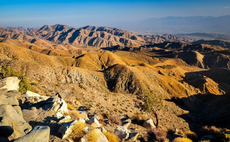 USA Southwest desert landscape during sunset. USA Southwest desert landscape during golden sunset royalty free stock image