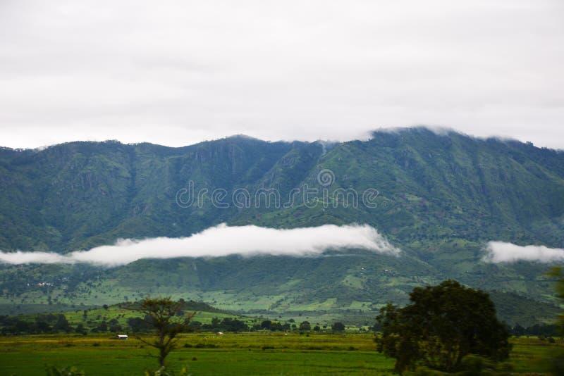 Usambara-Berge Tanga Tansania lizenzfreies stockfoto