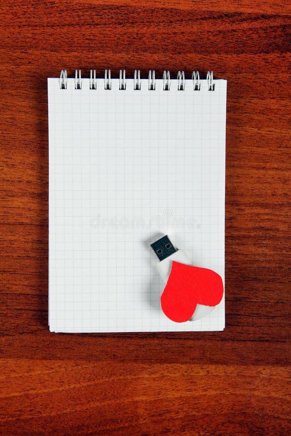 USB exponeringsdrev på anteckningsboken arkivfoto