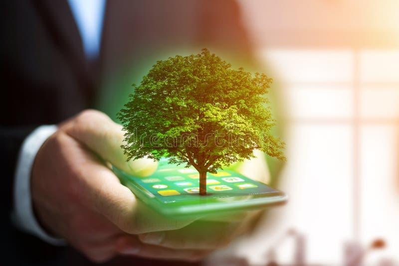 Uscire verde di uno smartphone - concetto dell'albero di ecologia fotografia stock